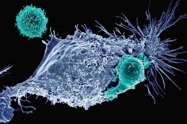 Gene Therapies for Cancer Treatment Market