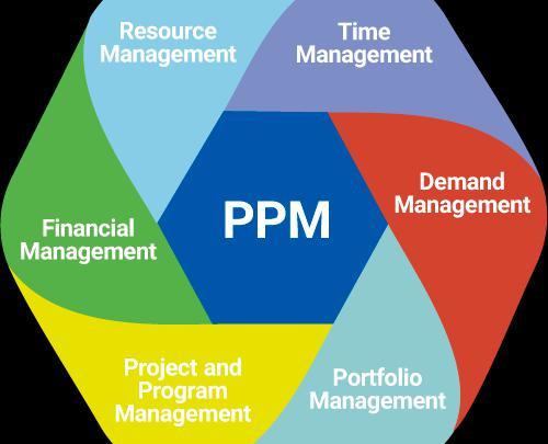 Project Portfolio Management (PPM) Software Market