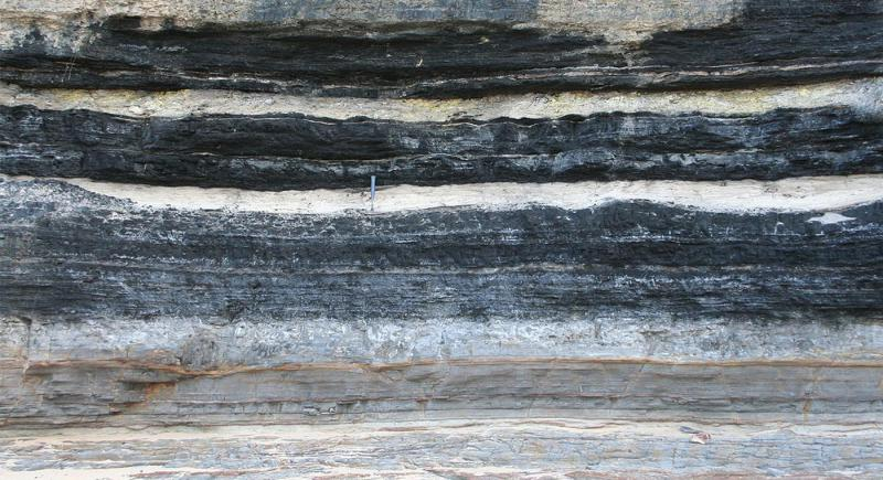 Coal Bed Methane Market