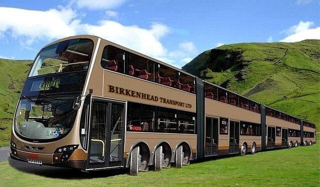 articulated bus Market Status 2019