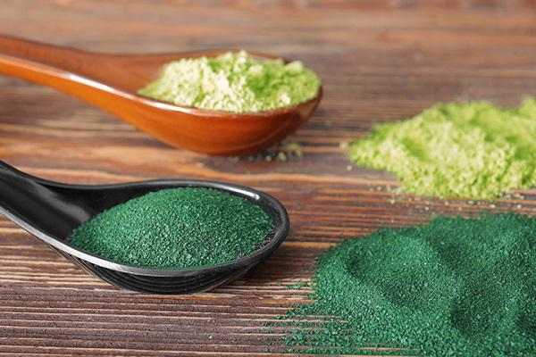 Algae Products Market by 2025 with Industry Key Players euglena