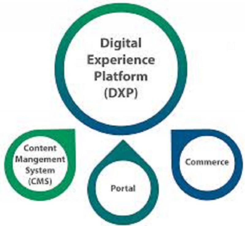 Digital Experience Platforms (DXP) Software Market