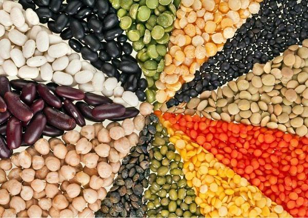 Neutral Alternative Protein Market Business Growth Statistics