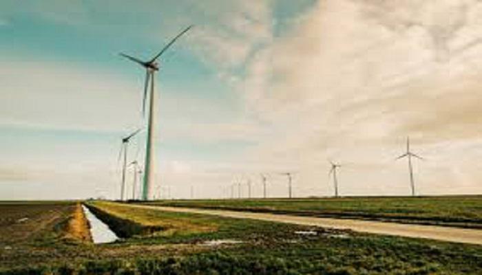 Renewable Energy Market: Top growth drivers & revenue making