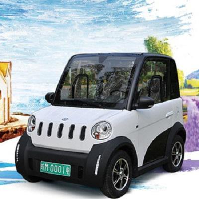 Micro-Electric Vehicle