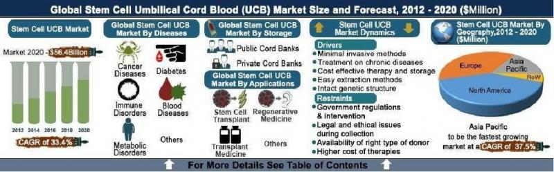 Stem Cell Umbilical Cord Blood (UCB) Market