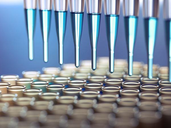 Global Drug Screening Market to Grow at a CAGR over 11.87% from