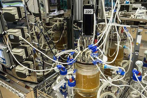 Single-use Bioprocessing Material Market Report 2023: