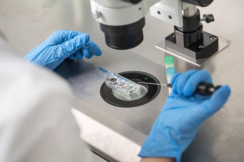 High Adoption by End-users Fuel the Growth of IVF Services Market