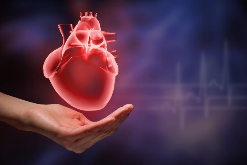 Heart Blocks Treatment Market