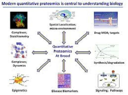 Proteomics Market Key Players are Thermo Fisher Scientific