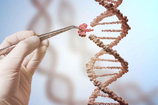 Animal Genetics Market