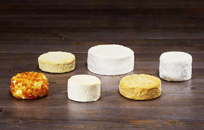 Flavoured Cheese Market Report