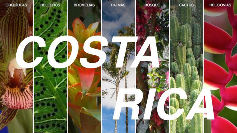Unique Botanical Tour to Costa Rica