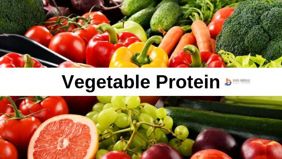 2019 Vegetable protein Market Report by Top Competitors like