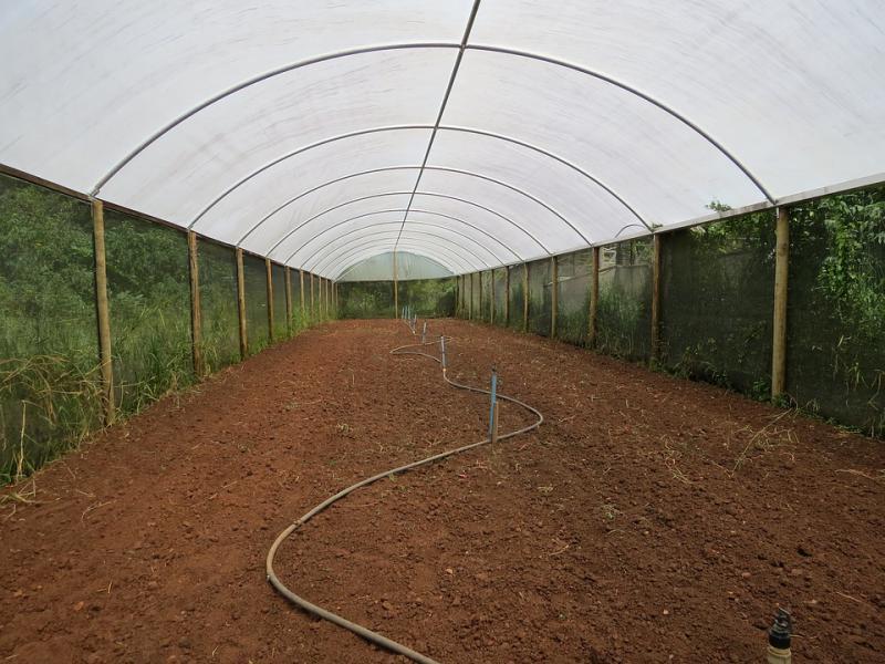Greenhouse Soil Market