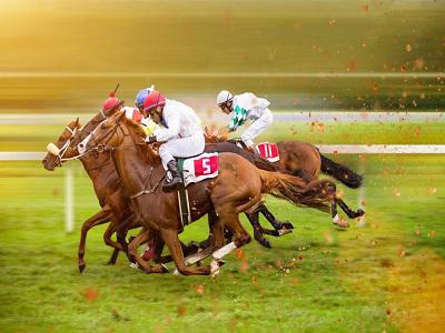 Horse Racing Market