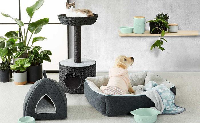 Pet Product Market