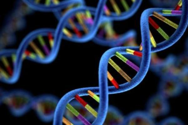 Genomics Market Expanding with Technological Drive