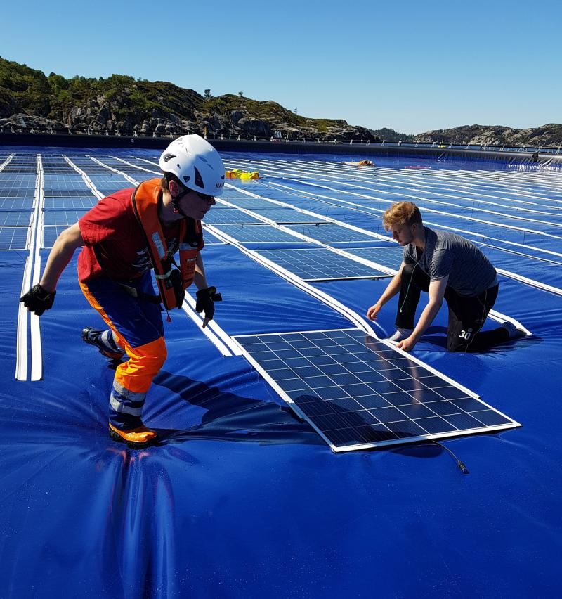 Ocean Sun?s trampoline-style floating solar array reduces flotation framing compared with other designs. Credit: Ocean Sun