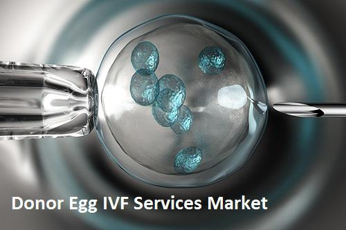 Donor Egg IVF Services Market