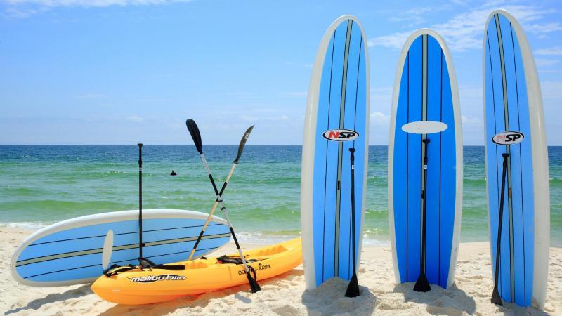 Surface Water Sports Equipment Market - Comprehensive