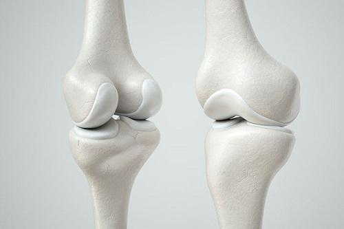 Cartilage Repair Market Predicted to Deliver Dynamic