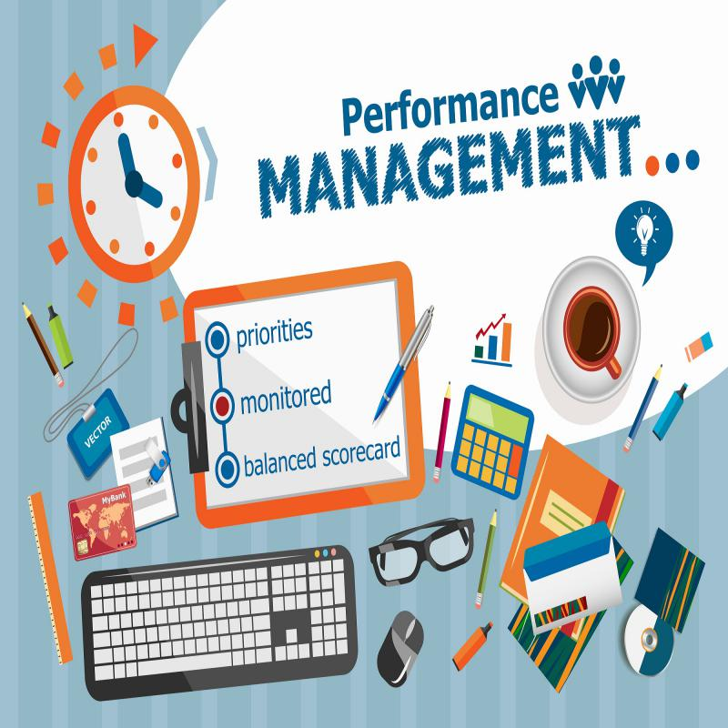 Latest Innovative report on Performance Management Systems