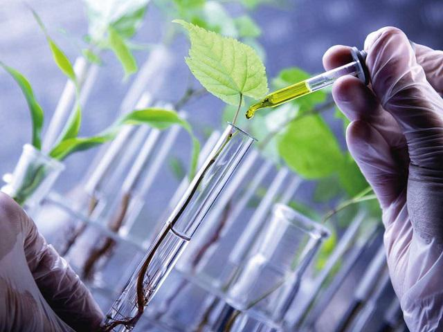 Bio Polyols Market