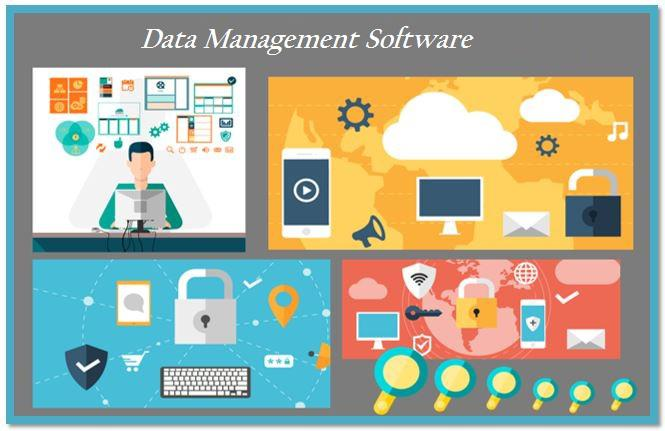 Data Management Software Market