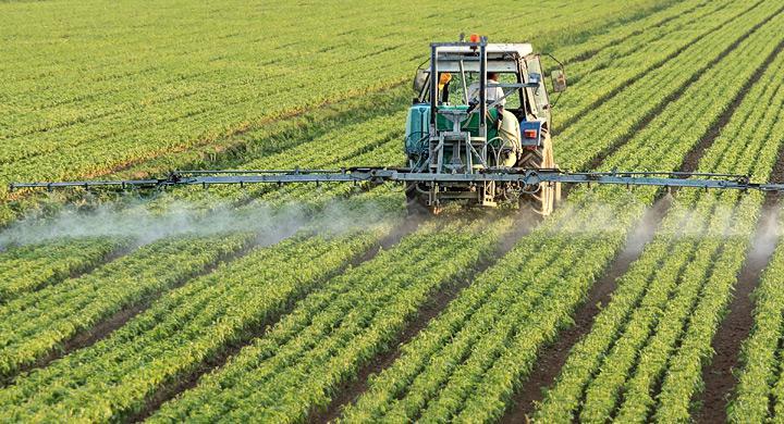 Water Soluble Fertilizers Market
