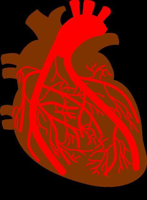 Ischemic heart Disease Market