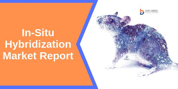 In-Situ Hybridization Market to Grow by 5.4% CAGR by 2024  