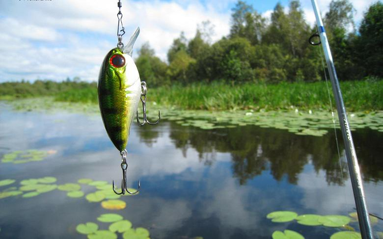 Sports Fishing Equipment