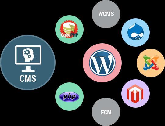 Content Management Software (CMS) Market
