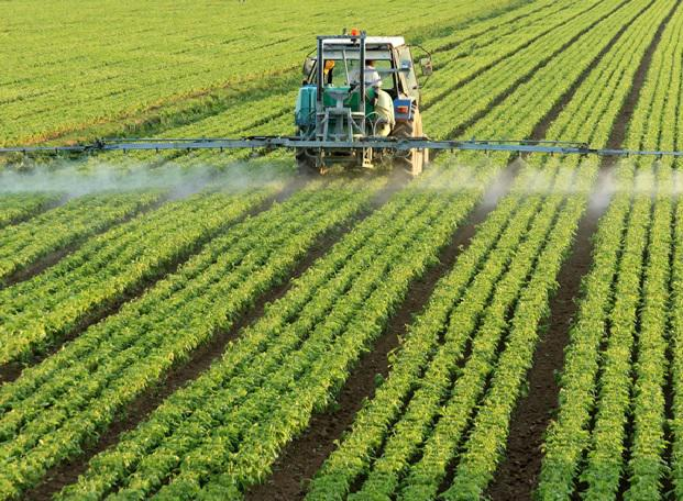 Herbicides Market Report 2026: Market Trends and Competitive Analysis, by Top Key Vendors like: Syngenta, Monsanto, Alligare, Arys