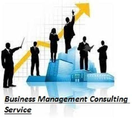 Business Management Consulting Service