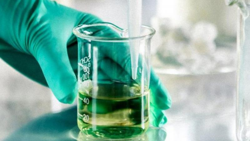 Crude Sulfate Turpentine Market Size, Share | Industry Report 2026