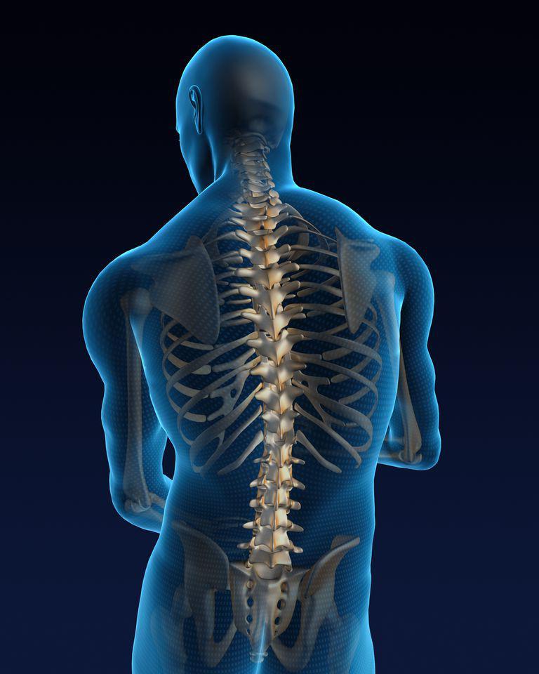 Spine Bone Stimulators Market