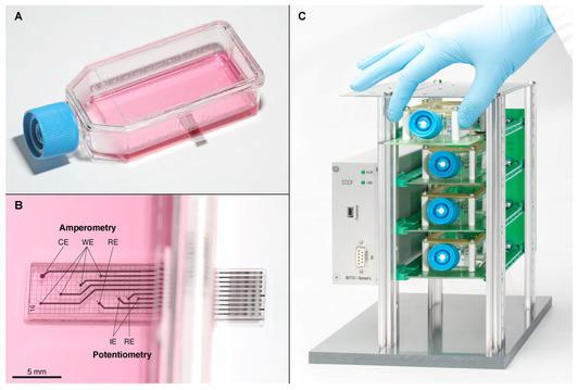 Cell Culture Monitoring Biosensor