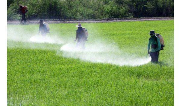 Global Agricultural Disinfectant Market Analysis 2019-2024