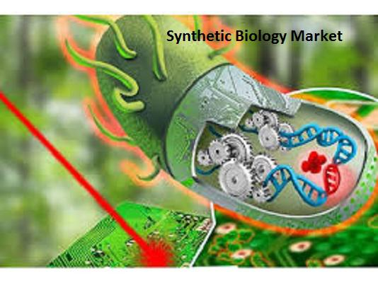 Synthetic biology market growing at a CAGR of 15.5% by 2022 | Top 5