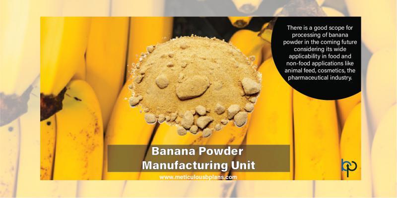 Banana Powder Manufacturing Unit