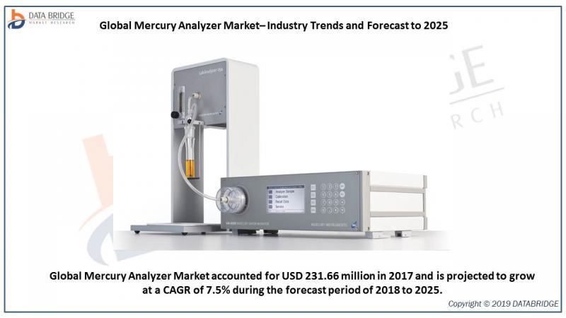 Global Mercury Analyzer Market
