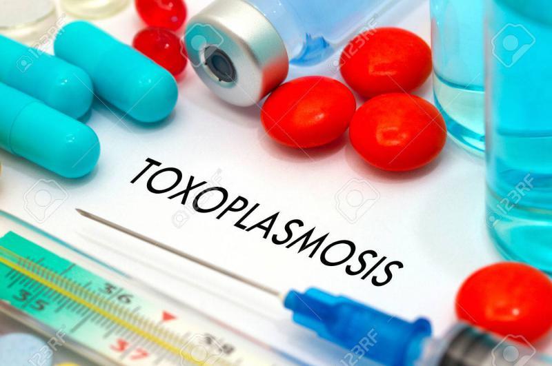 Drugs for Toxoplasmosis Market Analysis to 2025 with Turing Pharmaceutical, Snowdon, Guangzhou Baiyunshan Pharmaceutical Co., Ltd.
