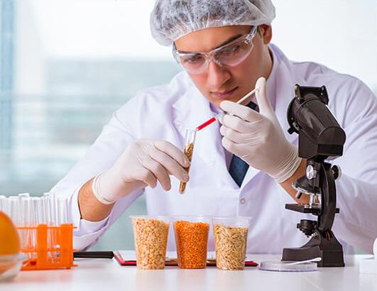 South Africa Food Safety Testing Market