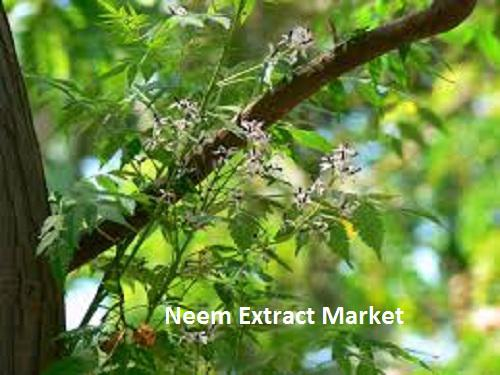 Neem Extract Market Analysis Report 2018 by Size, Share, Growth