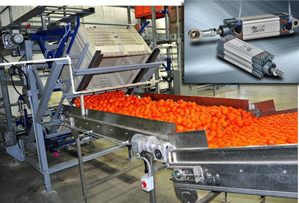 Food Processing Machinery Market