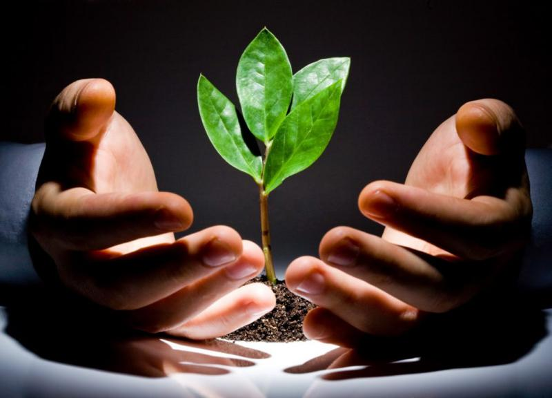 Global Venture Capital Investment Market, Top key players