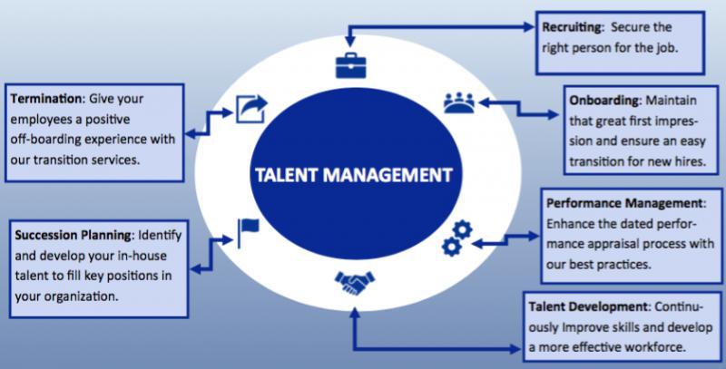 Global Talent Management & Organization Transformation